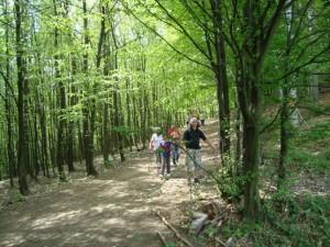 Szatmárnémeti Természetjárók az erdei túrán