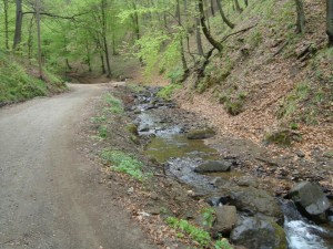 Szatmárnémeti Természetjárók gyalogtúra Fokhagymás Völgye